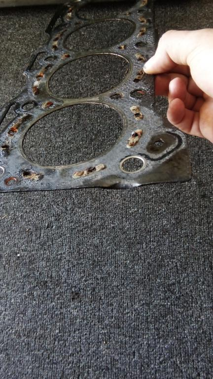 Coolant in oil, but the cylinder head is flat? Could it just have bin this gasket?-img_20190909_102835.jpg