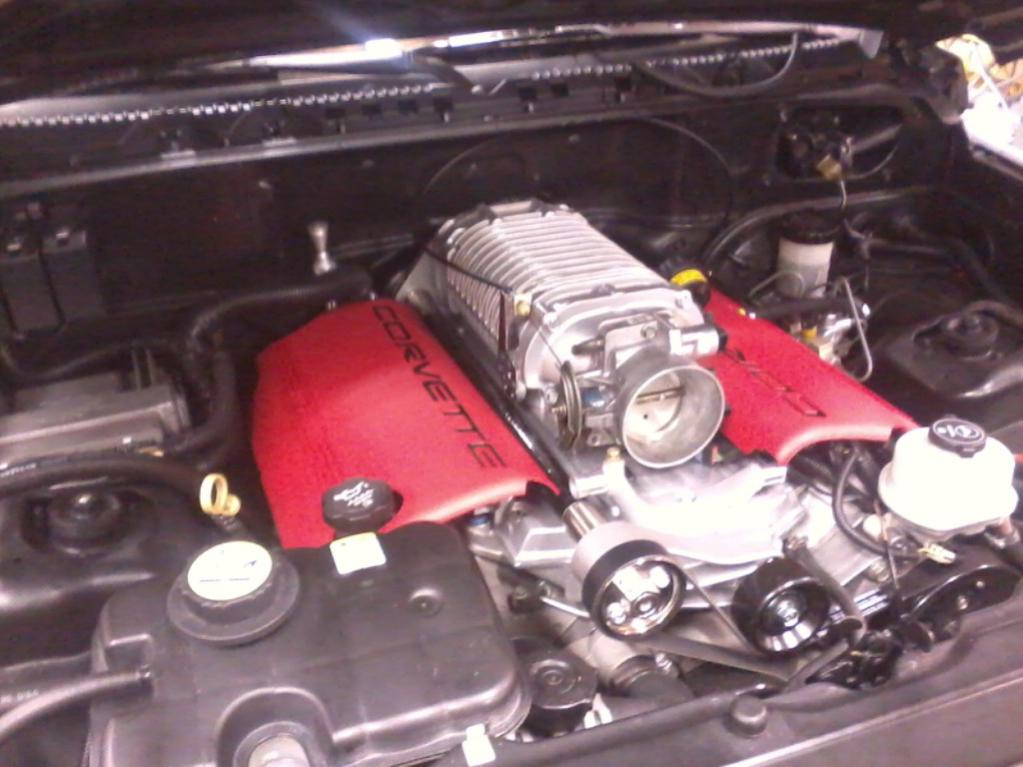 Suzuki stockman engine conversion